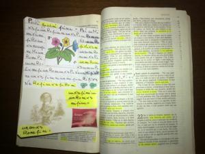 la nuova bibbia di olindo