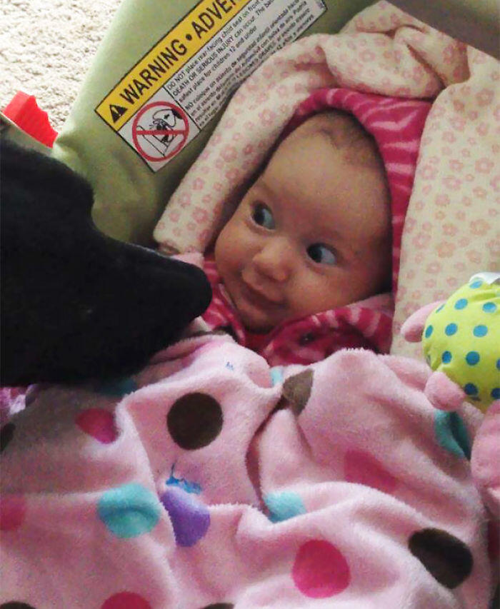 Friend's Baby Meets Her First Dog